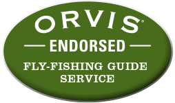 Orvis fly-fishing guide service